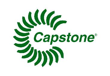 logo Capstone